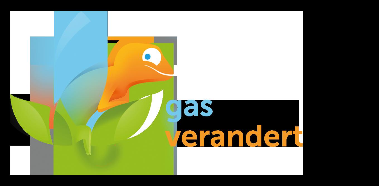De gasconversie. Enkele weetjes